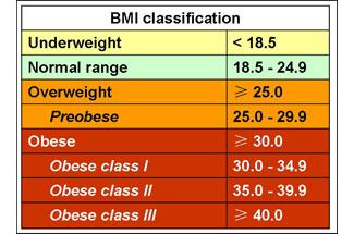 BMI-Classification